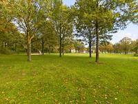 Kerkuil 36 in Emmen 7827 GC