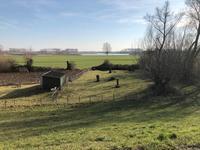Hoenzadrielsedijk 24 in Hoenzadriel 5333 PA