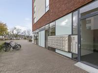 Dirigentplein 131 in Eindhoven 5642 RK