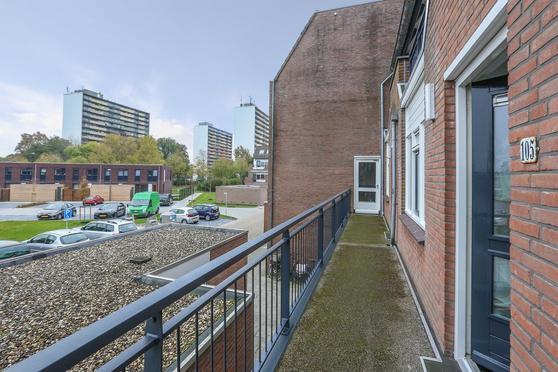 Populier 105 in Heerenveen 8446 ST