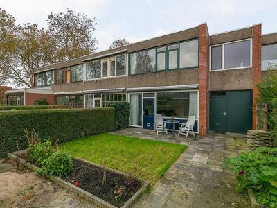 Kogeldistel 7 in Rotterdam 3068 NH