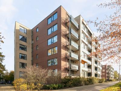 Kruisberg 173 in Etten-Leur 4871 BK