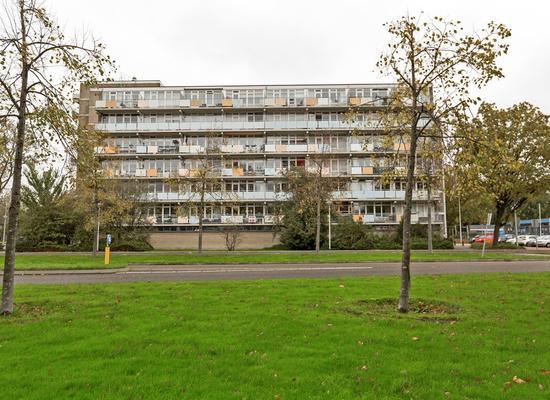 Lupinesingel 402 in Alphen Aan Den Rijn 2403 CX