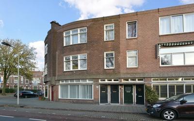 Van Boetzelaerlaan 229
