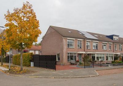 Mast 19 in Elburg 8081 NG