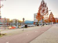 Cornelis Van Rijplantsoen 6 in Amsterdam 1063 MC