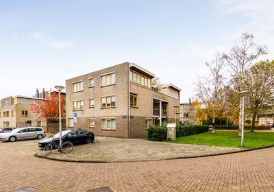 Zoutberg 12 in Amsterdam 1035 KS
