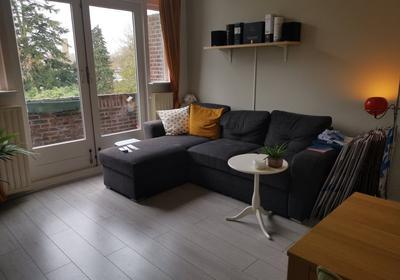 Hoge Rijndijk 103 A in Leiden 2314 AA