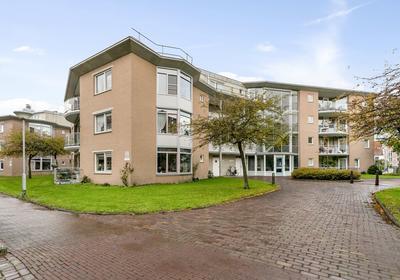 Meestoof 43 in Middelburg 4331 VD