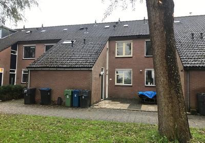 Vijzelstraat 23 in Alkmaar 1825 KT