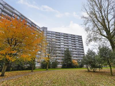 Griegplein 113 in Schiedam 3122 VN