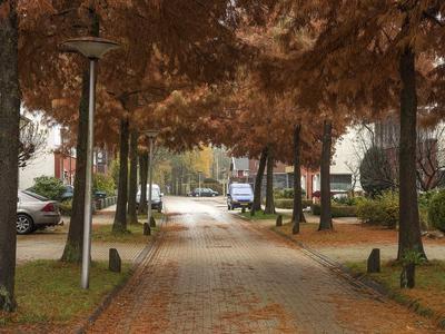 Waterweegbreelaan 12 in Enschede 7534 KH