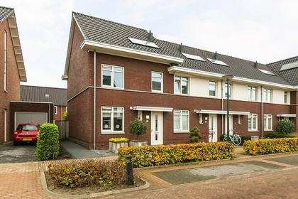 Kattestart 41 in Gemert 5422 DP