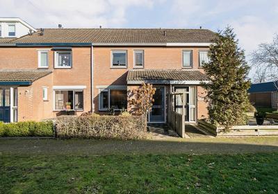 Petuniastraat 6 in Oldebroek 8096 XD