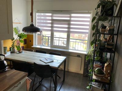 Populier 209 in Heerenveen 8446 ST