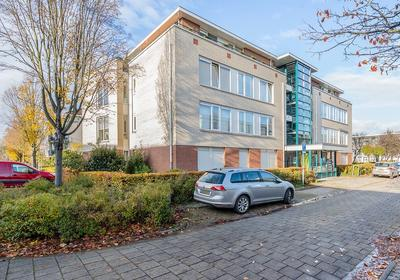 Schout Van Herenthalsplein 16 in 'S-Hertogenbosch 5237 TK