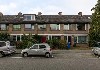 Dennekruid 53 in Rotterdam 3068 SE