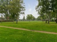 Laan Van De Iemenhees 496 in Emmen 7823 JV