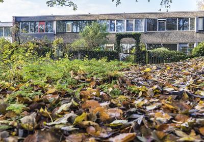Sloep 59 in Groningen 9732 CC