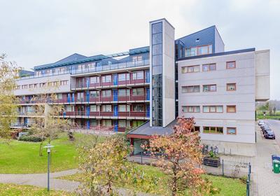 Jan Campertstraat 46 in Haarlem 2025 GZ