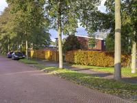 Het Bildt 120 in Lelystad 8245 CN