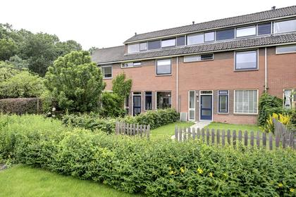 Dr.M. Noordewierstraat 35 in Baflo 9953 SV