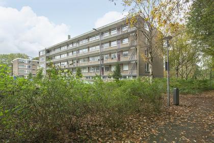 Schalkeroord 143 in Rotterdam 3079 WD