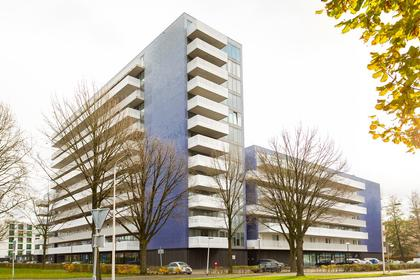 Vijfhagen 123 in Breda 4812 XT