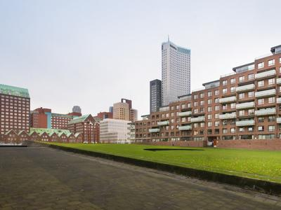 Helmersstraat 21 in Rotterdam 3071 AD