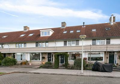 Visdief 9 in Bergen Op Zoom 4617 KG