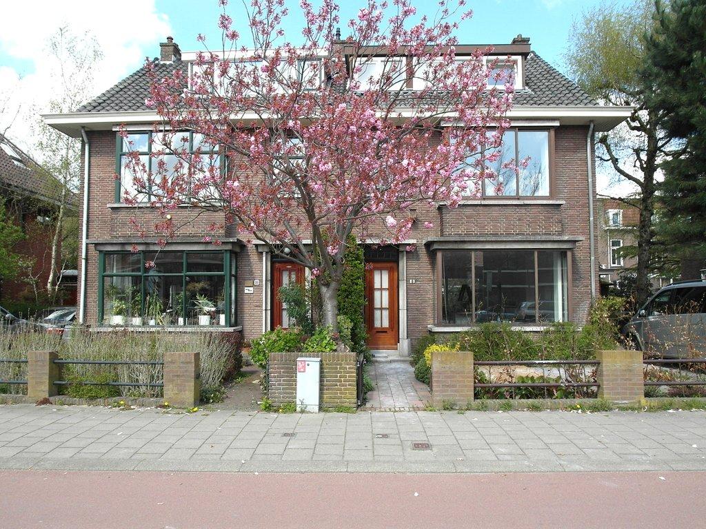 Ruys de Beerenbrouckstraat, Delft