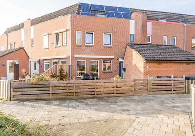 Bereklauw 51 in Kampen 8265 GS
