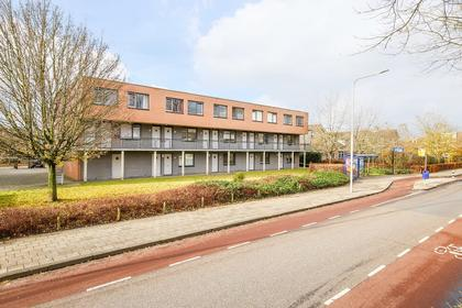 Greuns 24 in Zwolle 8032 MN