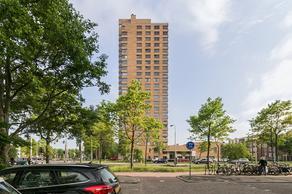 Van Beresteynstraat 155 in Delft 2614 HE
