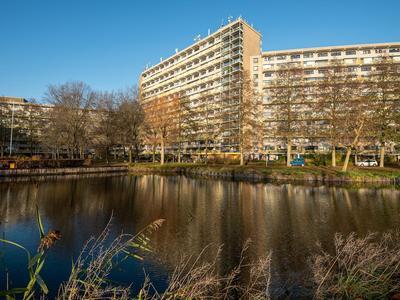 Dokter Van Stratenweg 234 in Gorinchem 4205 LJ