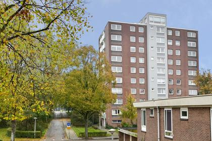 Dierenriem 128 in Amsterdam 1033 AJ
