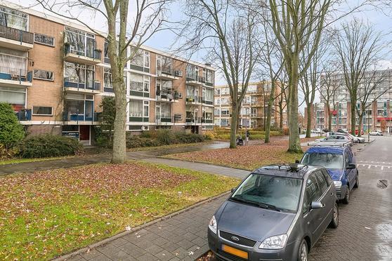 Schoonegge 271 in Rotterdam 3085 CV