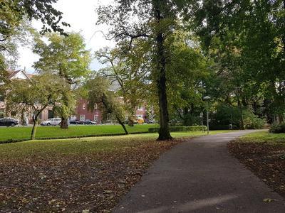 Willem De Zwijgerstraat 1 A in Utrecht 3583 HA