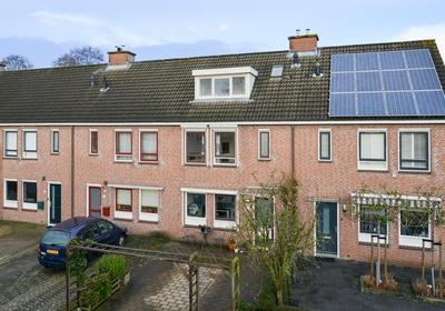 Hazepad 32 in Soest 3766 JV