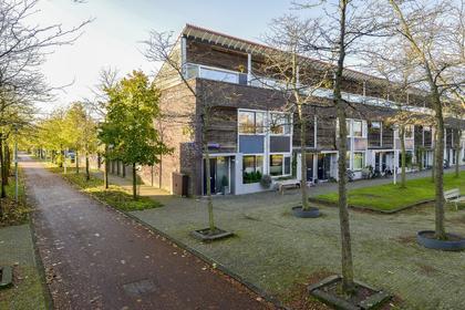 Liedekerkeplantsoen 24 in Amsterdam 1066 WP