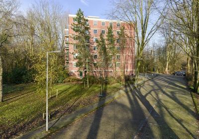 Ilperveldstraat 156 in Amsterdam 1024 PL