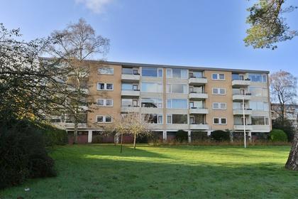 Merelhof 103 in Bussum 1403 CW
