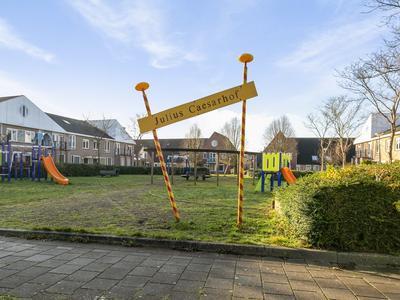 Julius Caesarhof 15 in Wijk Bij Duurstede 3962 LK