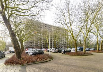 Jisperveldstraat 81 in Amsterdam 1024 AD