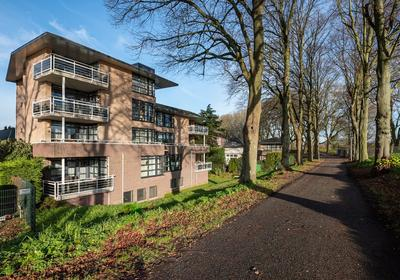 Paddemoes 78 in Gorinchem 4201 BV