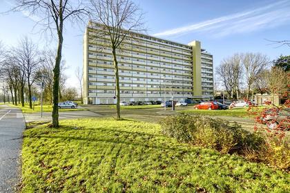 Van Vollenhovenplein 46 in Leiden 2313 EB