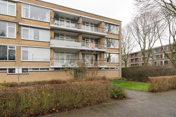 Nieuwenoord 226 in Rotterdam 3079 LP
