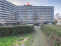Kadoelerbos 186 in Zoetermeer 2715 SJ