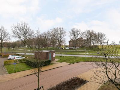 Achterwerf 255 in Almere 1357 DB