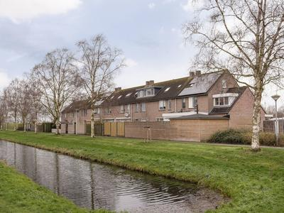 Paardebloem 38 in Kampen 8265 MP